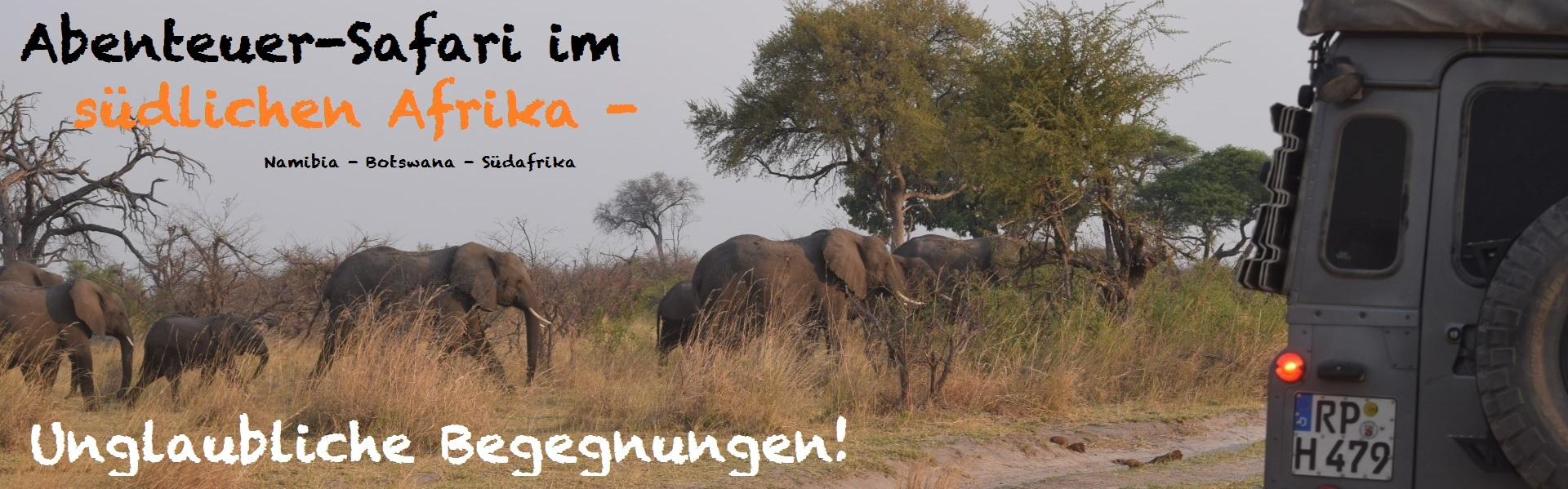 Namibia_Botswana_Safari.jpg