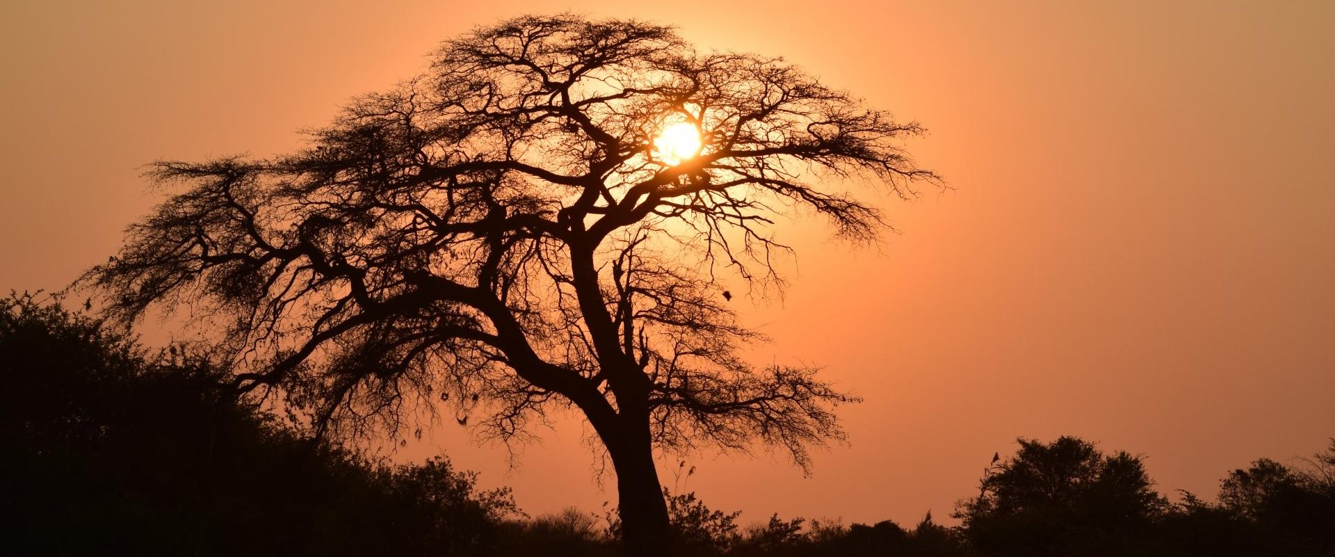 Namibia19.jpg